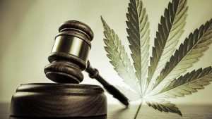 Judge gavel & marijuana leaf